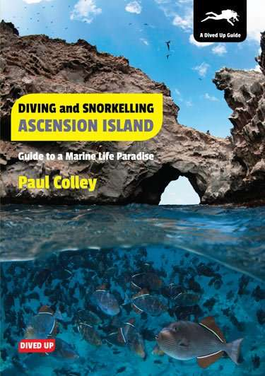 Diving and Snorkelling Ascension Island by Paul Colley