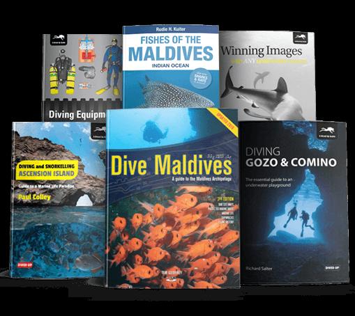 Dive Guides